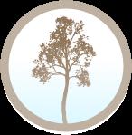 midwinter-dg.com logo